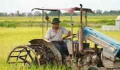 Nông thôn và nông dân phải được định hướng phát triển bền vững